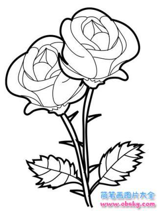 两朵玫瑰花简笔画画法_怎么画两朵玫瑰花 - 简笔画花朵 - 儿童简笔画