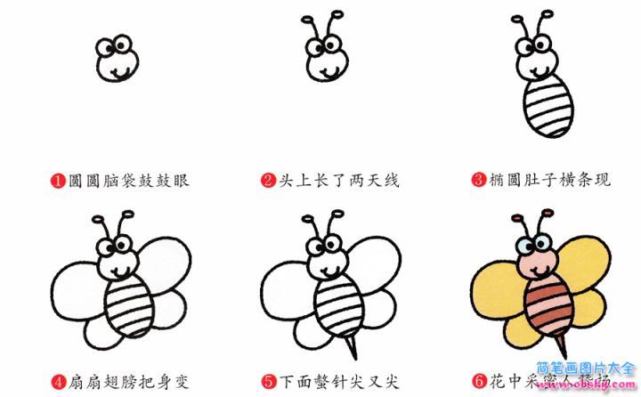 蜜蜂简笔画画法 怎么画蜜蜂的简笔画 简笔画动物 儿童简笔画