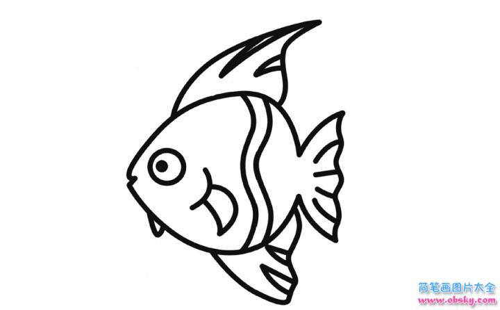 彩色简笔画燕鱼的图片教程