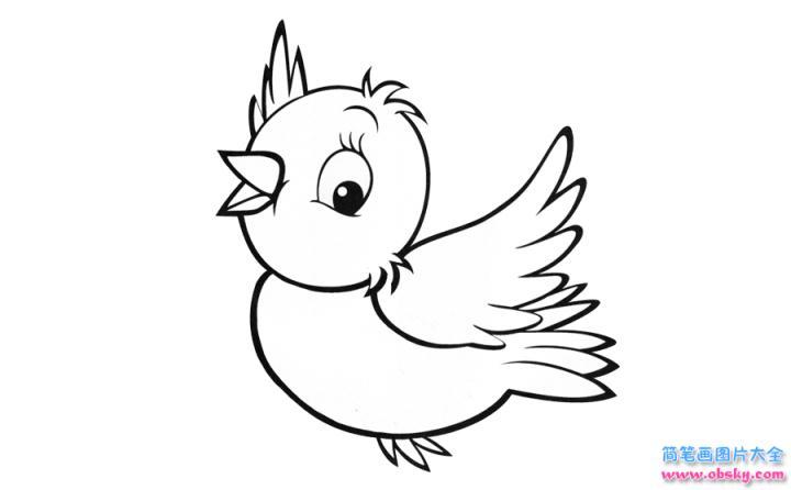彩色小鸟简笔画画法 怎么画彩色小鸟的简笔画 简笔画大全 儿童简笔画