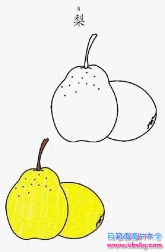 带颜色的梨简笔画大全