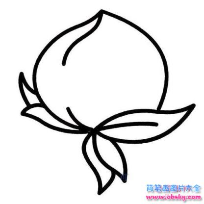 儿童桃子简笔画