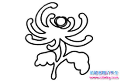 重阳节赏菊花简笔画图片
