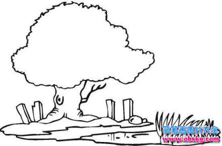 如何画风景 河边的树简笔画