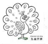 怎么画可爱的卡通孔雀简笔画