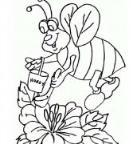 怎么画动物劳动节:勤劳的蜜蜂简笔画的教程