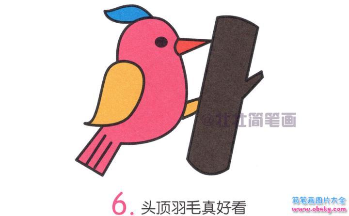 啄木鸟简笔画画法 怎么画啄木鸟的简笔画 简笔画动物 儿童简笔画图片大全