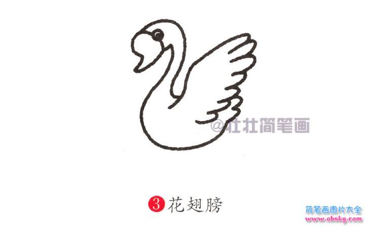 天鹅简笔画画法 怎么画天鹅的简笔画 简笔画动物 儿童简笔画图片大全