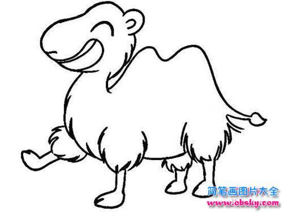 可爱小骆驼简笔画