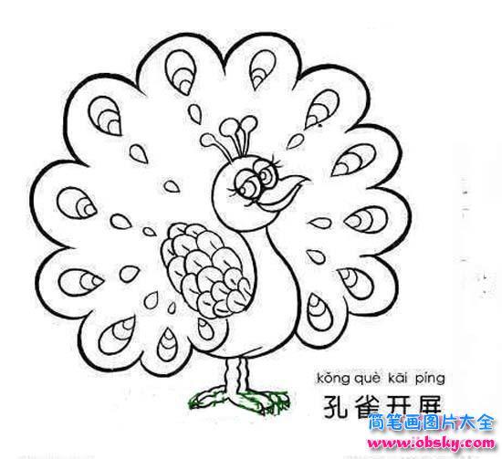 可爱的卡通孔雀简笔画图片 简笔画孔雀 儿童简笔画图片大全