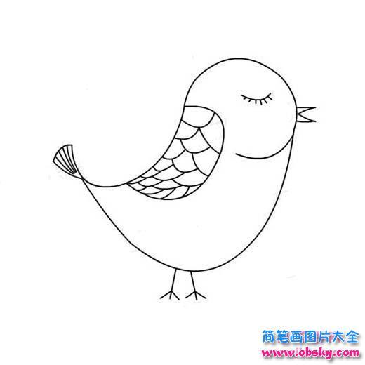 小鸟简笔画 睡觉的小鸟 简笔画小鸟 儿童简笔画图片大全