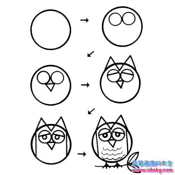 猫头鹰简笔画的画法教程