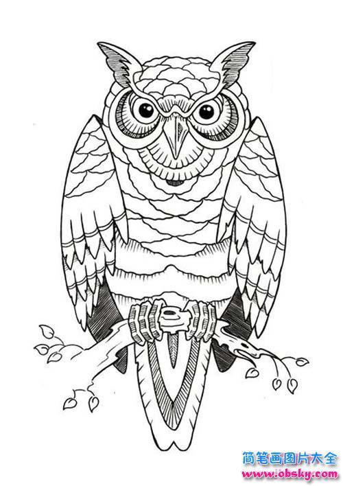 动物简笔画大全 猫头鹰 简笔画猫头鹰 儿童简笔画图片大全