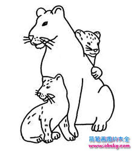 儿童关于母豹与小豹子简笔画图片大全