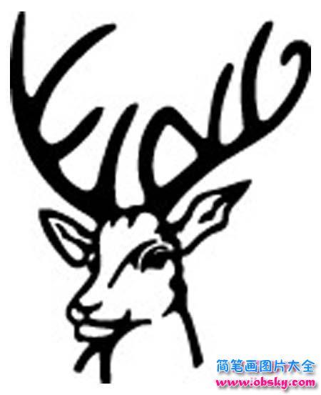 鹿头简笔画图片 简笔画鹿 儿童简笔画图片大全