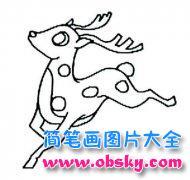 奔跑的鹿简笔画图片