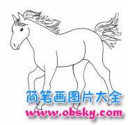 动物简笔画:马