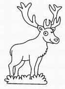 幼儿圣诞节麋鹿简笔画图片