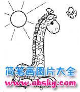 风景简笔画:太阳下的长颈鹿与小鸟