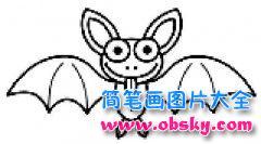 儿童卡通蝙蝠简笔画图片