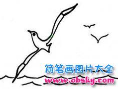 幼儿风景简笔画图片:大海上的海鸥