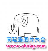动物简笔画:大象