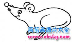 儿童简笔画:老鼠
