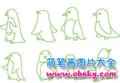 各种企鹅简笔画图片大全