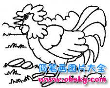 动物简笔画:啼叫的公鸡