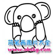儿童动物简笔画图片:考拉